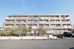 大阪府八尾市桂町6丁目の賃貸マンションの外観