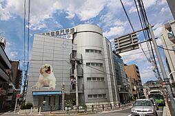 須田マンション[4階部分号室]の外観