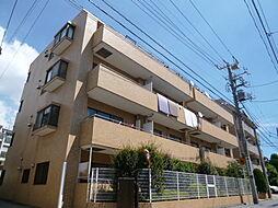 東京都中野区本町5丁目の賃貸マンションの画像
