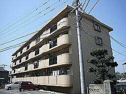 福岡県糟屋郡志免町別府1丁目の賃貸マンションの外観