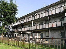 千葉県野田市宮崎の賃貸マンションの外観