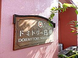 ドミトリー白樺[2階]の外観