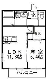 岡山県岡山市北区花尻あかね町の賃貸アパートの間取り