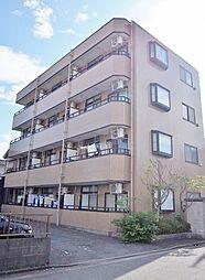 MATSUSHITA maison[303号室]の外観