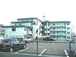 サンハイツホリウチ[205号室]の外観