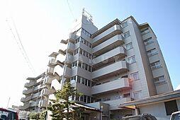 ロイヤルツカワキ[7階]の外観