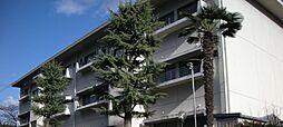 石塚ハイツ[B1号室号室]の外観