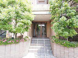 神奈川県川崎市宮前区菅生1丁目の賃貸マンションの外観