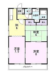 静岡県三島市鶴喰の賃貸アパートの間取り