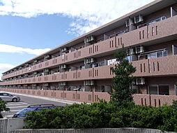 セントリバーヒルズひばりが丘I[2階]の外観