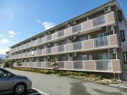 長野県松本市高宮中の賃貸マンションの外観