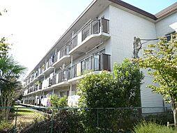 第11モロマンション[3階]の外観