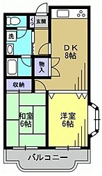 森コーポ[3階]の間取り