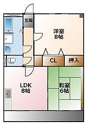 兵庫県西宮市上甲子園1丁目の賃貸マンションの間取り