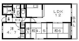 シャトー谷浦[305号室号室]の間取り
