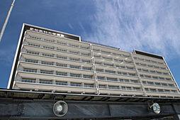 愛知県名古屋市守山区八反の賃貸アパートの外観