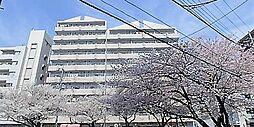 サンライト南浦和2番館[7階]の外観