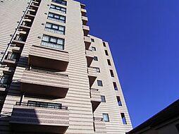 フィールE北新宿[207号室]の外観