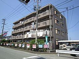 ドミール上野[1階]の外観