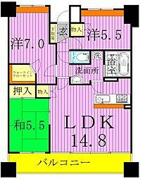 東京都足立区舎人5丁目の賃貸マンションの間取り