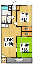 シャトーワカバ[1階]の間取り