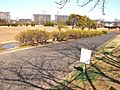 八乙女中央公園...