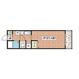 ドマーニ[5階]の間取り