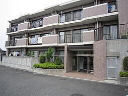 神奈川県海老名市上今泉4丁目の賃貸マンションの外観