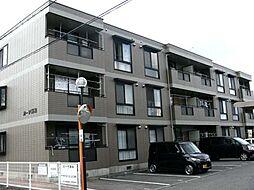 カーサ阪和[302号室]の外観