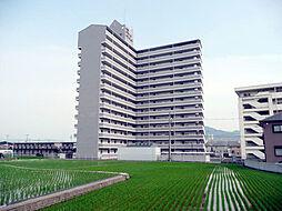 千代グランドマンションA[10階]の外観