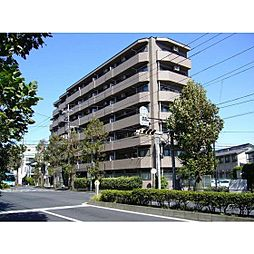 神奈川県川崎市中原区中丸子の賃貸マンションの外観