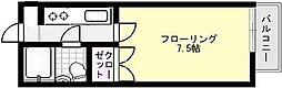 ルネス中村[203号室]の間取り