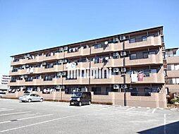 キャッスルベリー[3階]の外観
