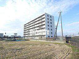 ロイヤル一宮[5階]の外観