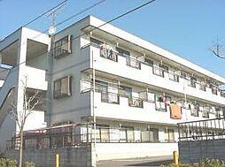 埼玉県さいたま市南区文蔵4丁目の賃貸マンションの外観