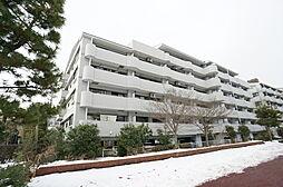 埼玉県草加市旭町2丁目の賃貸マンションの外観
