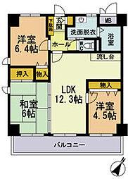 シティコート中陽II[4階]の間取り