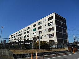 ファミール青葉台1号棟[507号室]の外観
