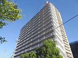 シェモア平野[11階]の外観