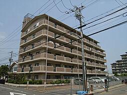 ドミール川崎[407号室]の外観