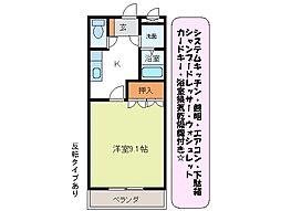 アシューレ B棟[1階]の間取り