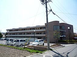 長野県松本市大字水汲の賃貸マンションの外観
