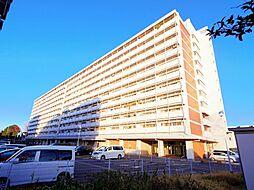 東京都西東京市向台町4丁目の賃貸マンションの外観