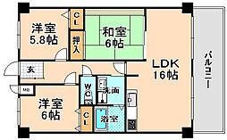 兵庫県伊丹市東野6丁目の賃貸マンションの間取り