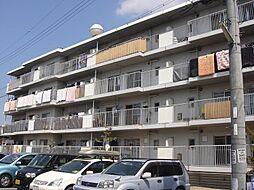 滋賀県栗東市小柿6丁目の賃貸マンションの外観
