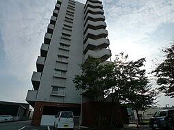 グレースタワー[508号室]の外観