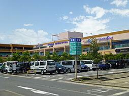 アメニティー小田原市酒匂アパート[101号室]の外観