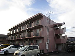 新潟県新潟市西区小針4丁目の賃貸マンションの外観