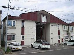 コットンハウス22