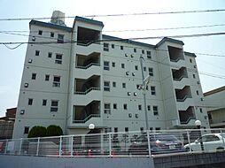 金剛ハイツ[1階]の外観